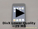 DivX Lower Quality ~29 MB